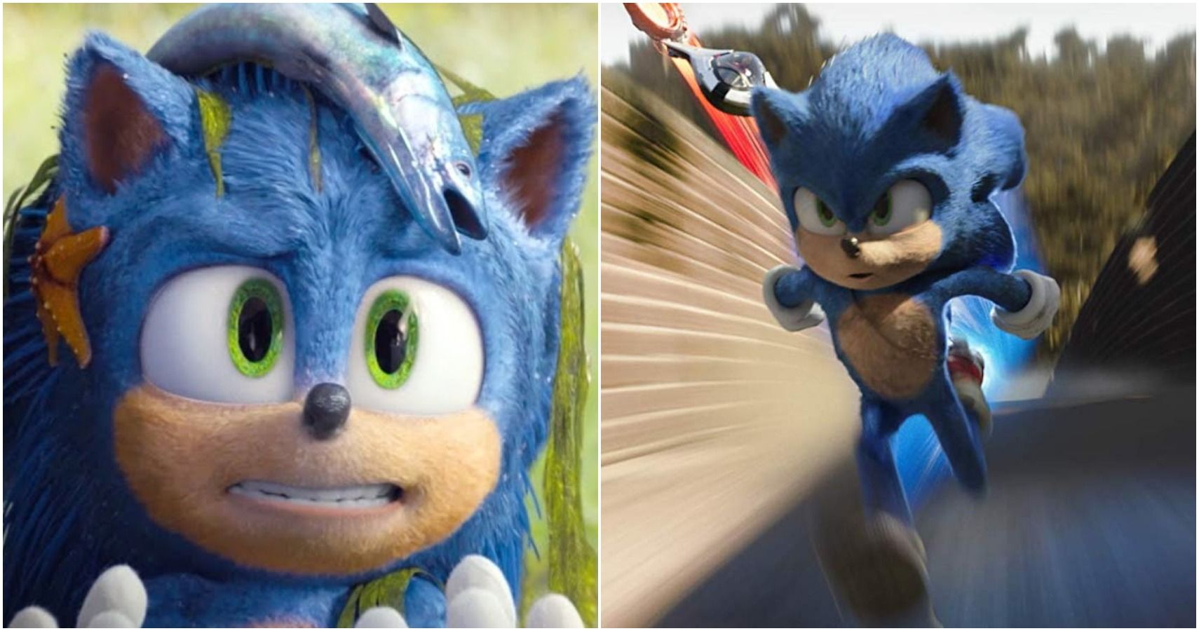 10 Unresolved Mysteries Plot Holes Left Hanging In The Sonic The Hedgehog Movie