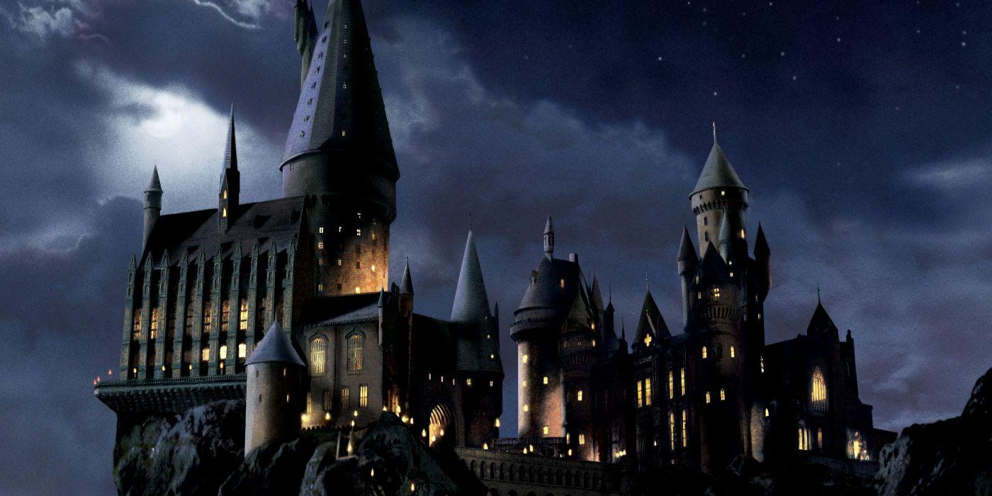 Harry Potter Hirnyrkit