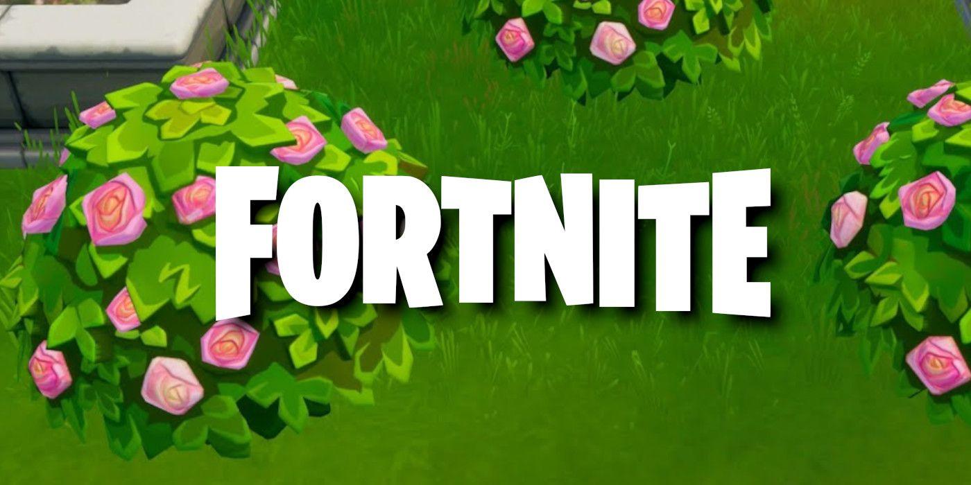 Get Rid Of Bush Fortnite Fortnite How To Destroy Shrubs Game Rant