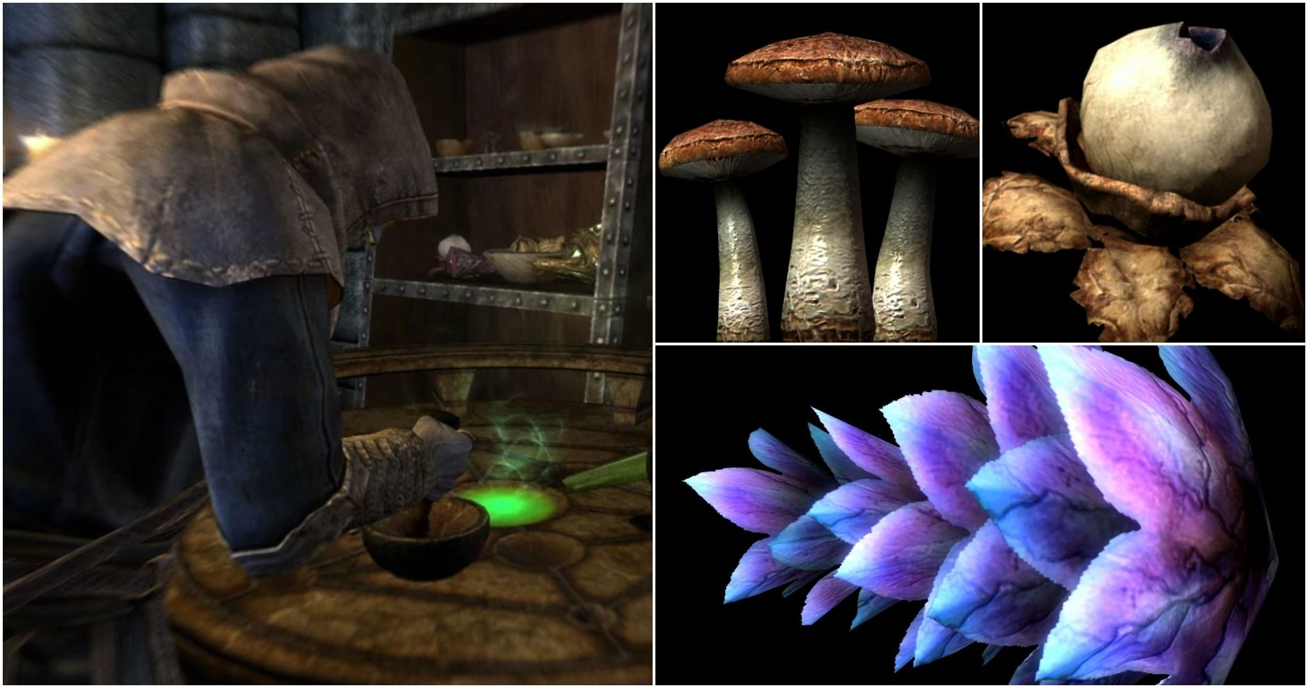 Skyrim: 10 Devastating Poisons & How To Make Them | Game Rant