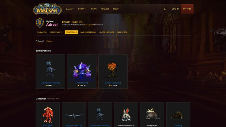 Blizzard Finally Updates World of Warcraft Armory and Profiles